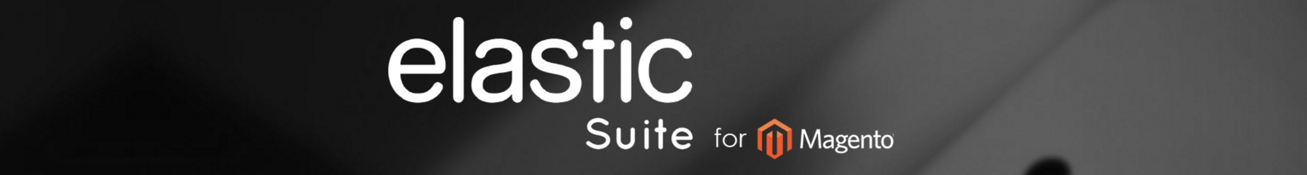 Review of ElasticSuite Magento 2 Extension for Search Optimization